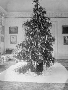 Photo 21 Christmas Tree